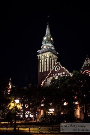 City Hall (Gradska kuca): Ratusz w Suboticy