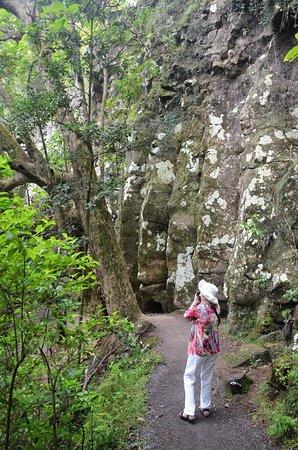 Kerikeri, Nieuw-Zeeland: The trail linking top and bottom