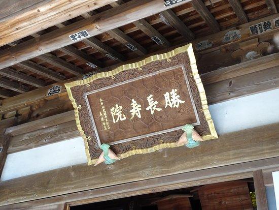 Yokosuka Photo