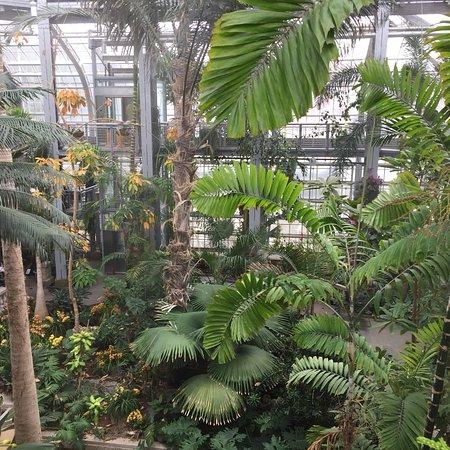 United States Botanic Garden: photo0.jpg