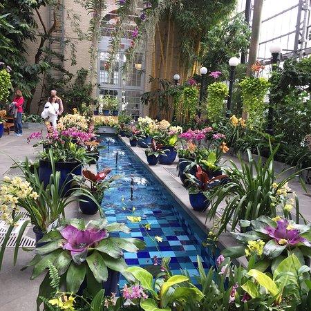 United States Botanic Garden: photo1.jpg