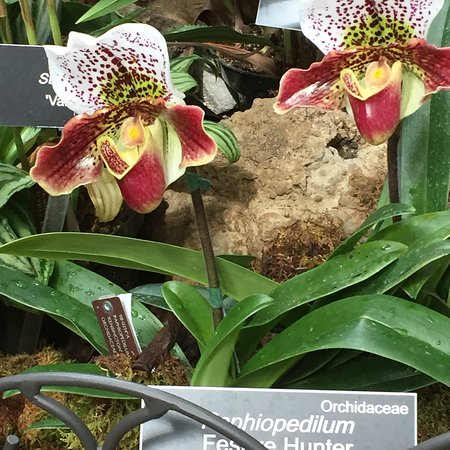 United States Botanic Garden: photo2.jpg