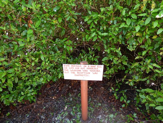 Promised Land, Australia: Some Tasmazia humour