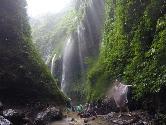 Madakaripura Waterfall: IMG-20180305-WA0051_large.jpg