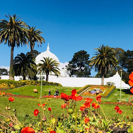 Golden Gate Park San Francisco All You Need To Know