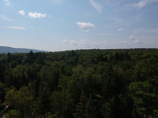 Foto de The Birches Resort