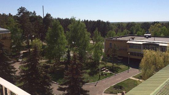 Kotovsk, Russland: Сосновый лес возле санатория - супер. По нему идет заасфальтированная дорожка по кругу - гулять