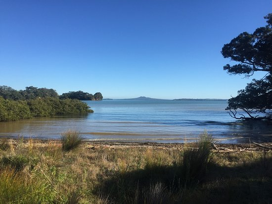Good Morning Picture Of Beautiful Nature Tours Auckland Auckland