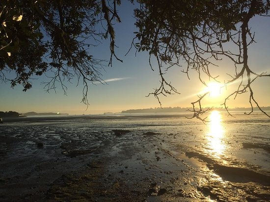 Stunning Auckland Picture Of Beautiful Nature Tours Auckland