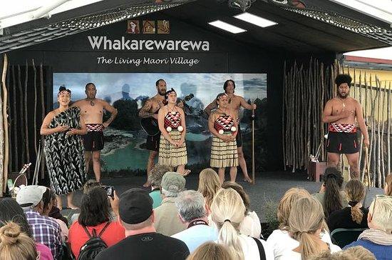 Tauranga Shore Excursion: Rotorua ...
