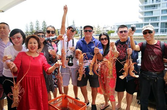 Mandurah Wild Seafood Adventure Cruise