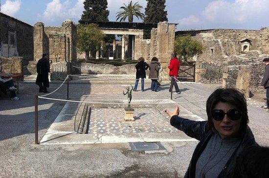 Dagstur fra Roma til Pompeii og Mt...