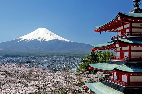 Get Out to Mt Fuji