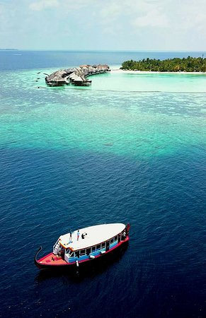 Dhigurah Divers