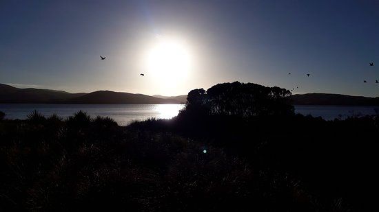 Waikava Harbour View: Sunrise over the estuary from the deck