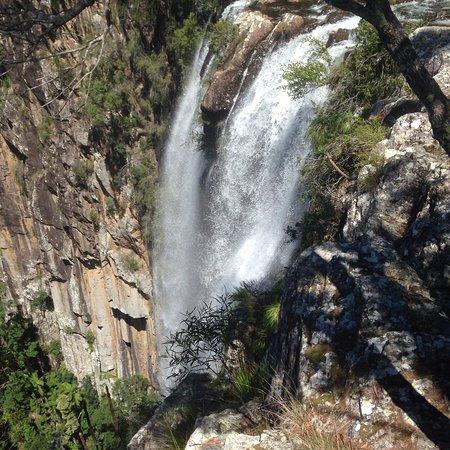 Bangalow, Australia: photo2.jpg