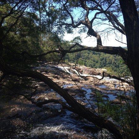 Bangalow, Australia: photo4.jpg