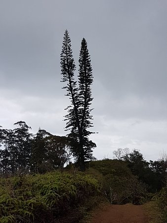 Waihee, Hawái: 20180306_120358_large.jpg