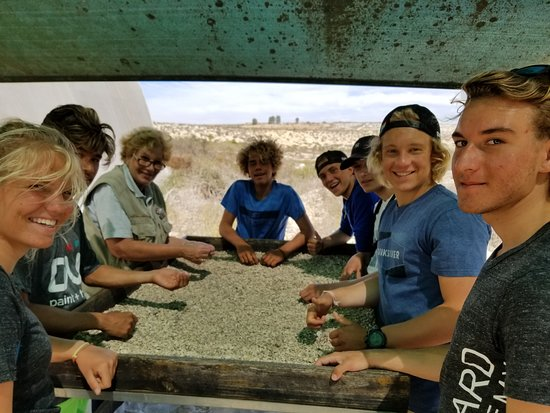 Saldanha, Afrika Selatan: Sifting through fossils where students were choosing ones they liked to ask questions about!