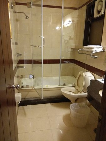 Hotel Royal Castle Grand: IMG_20180307_125417_large.jpg