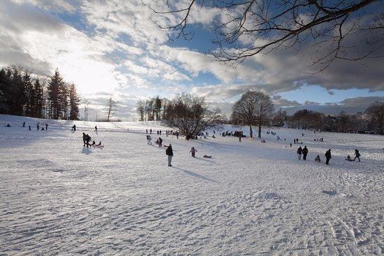 Gurten - Park im Grünen: Gurten im Winter