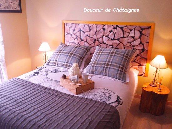 Du Côté de Lacoume照片
