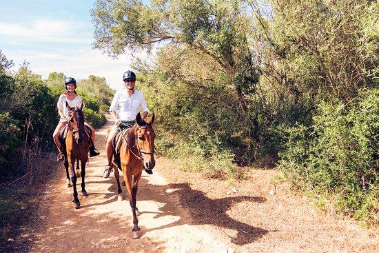 Cinigiano, Italy: Horse Back Experience