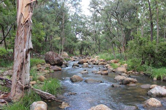 Mt Barney Lodge Country Retreat : Creek