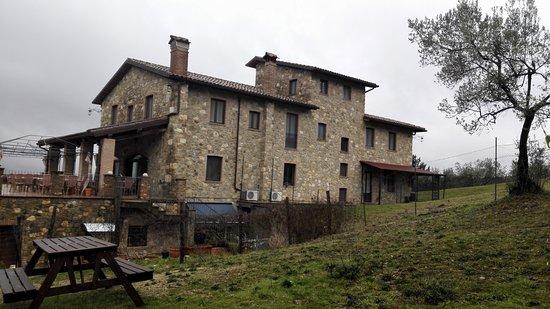 San Venanzo, Italien: Vista della struttura dala casetta di legno