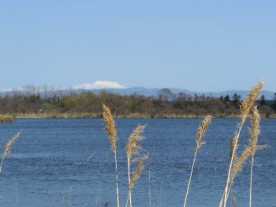 Ebetsu, Japan: 越後沼