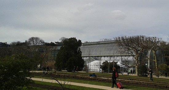 Jardin des Plantes : Grande serre