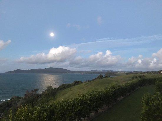 Cable Bay, Nueva Zelanda: Blick von der Terrasse