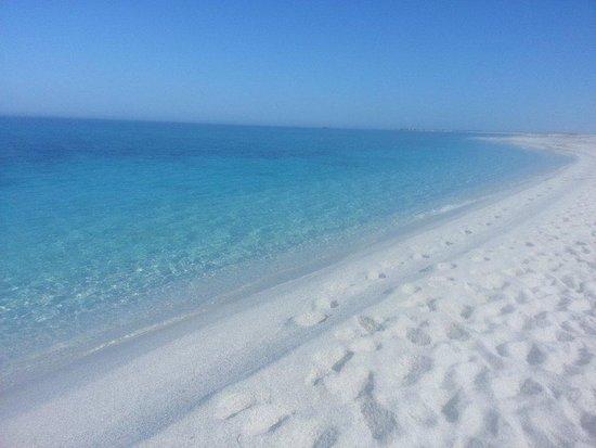 Province of Medio Campidano, Itália: la bellissima spiaggia di riso a mariermi nel sinis ad oristano