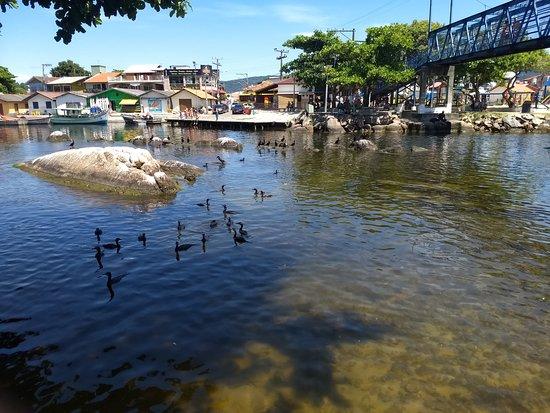 Puente y puerto, Barra da Lagoa