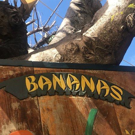 Bananas: photo2.jpg