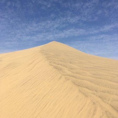 The Real Deal Rajasthan Camel Safari: photo4.jpg