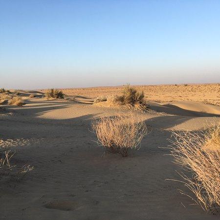 The Real Deal Rajasthan Camel Safari: photo5.jpg
