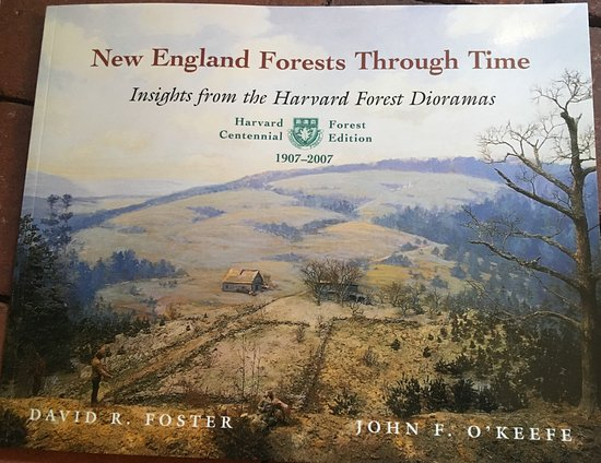 Petersham, MA : Book about the dioramas and more.