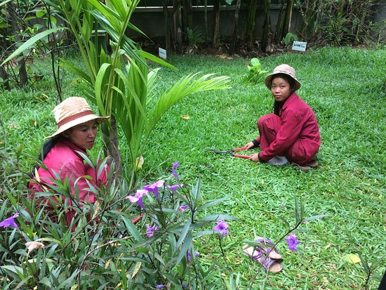 Sonalong Boutique Village & Resort: Mowing the lawn
