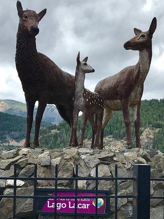 獵人據點旅館照片