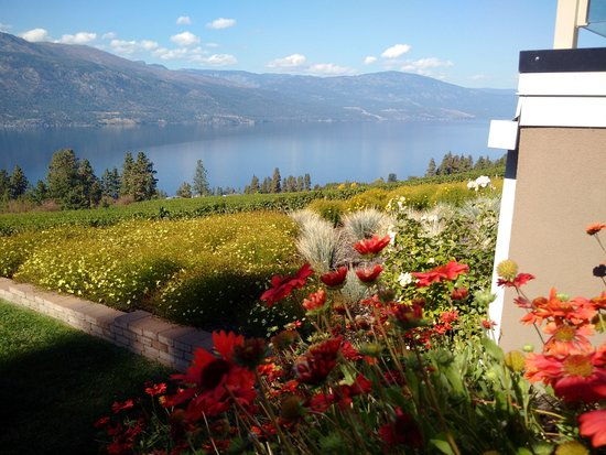 Vernon, Canada: Amazing flowers and view from Arrowleaf