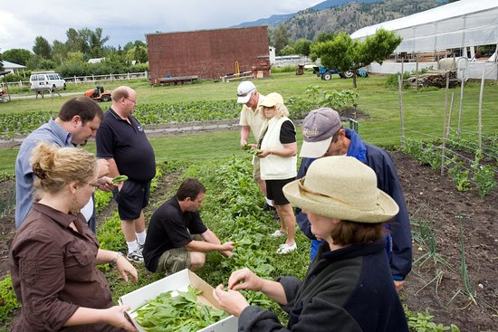 Vernon, Canada: Farm to Table Experience