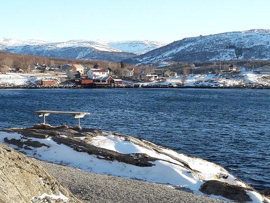 Saltstraumen: Local view