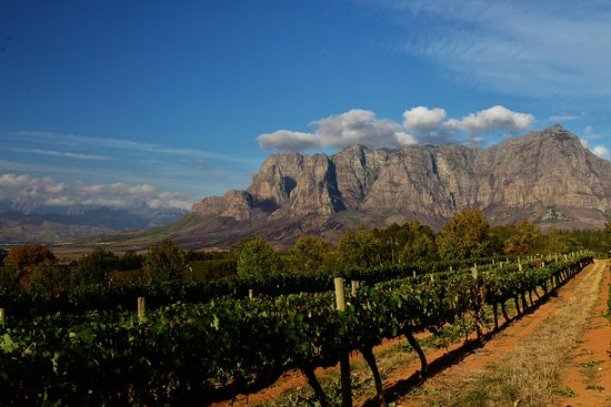 Cape Town, South Africa: Franschhoek Valley, Franschhoek, South Africa