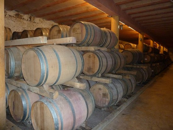 Chateau Rieutort : Wine tour at the Chateaux.