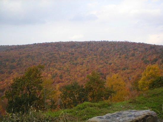 Renovo, PA: Beautiful Fall Folliage
