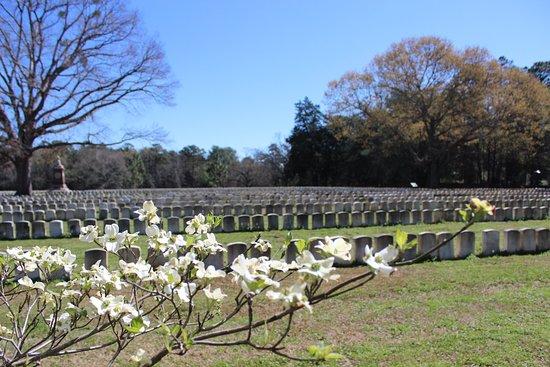 Americus, Джорджия: Andersonville POW Cemetery