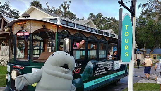 Manatee Express Tours On Shore