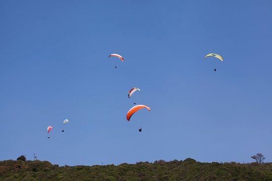 Wilderness Beach: Só uma parte dos parapentes no ar, haviam mais de 100 !
