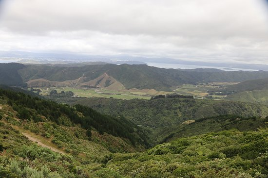 Wellington Adventures - Day Trip : Another beautiful view around every corner